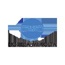 Логотип Konica Minolta